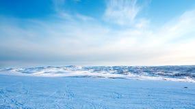 Wiosna w tundrze Biegunowy region Murmansk region Fotografia Royalty Free