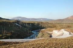 Wiosna w tundrze (północny Sibiria) Zdjęcie Stock