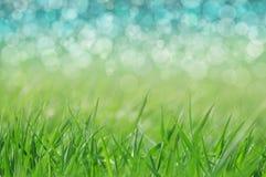 Wiosna, wakacyjny tło/ zdjęcia royalty free