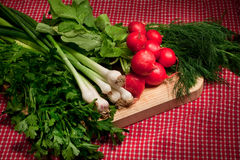 Wiosna warzywa Zdjęcie Stock