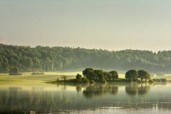 Wiosna wieczór Zielony Maj Wiosna wieczór mgła fotografia stock
