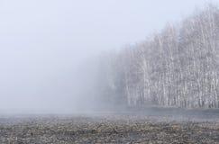 Wiosna wzrasta odparowywanie woda od grunt orny tworzący mgłę nad polem obrazy stock
