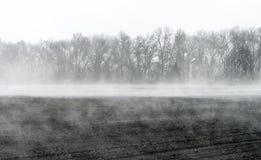 Wiosna wzrasta odparowywanie woda od grunt orny tworzący mgłę nad polem fotografia royalty free