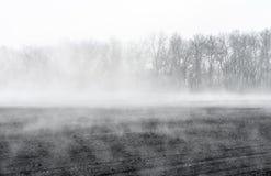 Wiosna wzrasta odparowywanie woda od grunt orny tworzący mgłę nad polem zdjęcie stock