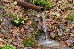 Wiosna z pięknymi otoczeniami Fotografia Stock