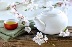 Wiosna zdroju herbata obrazy stock