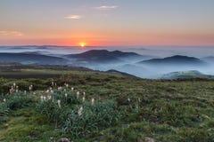 Wiosna zmierzch w mgle Zdjęcie Royalty Free