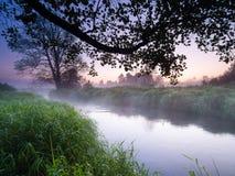 Wiosna zmierzchu krajobraz Zdjęcie Royalty Free