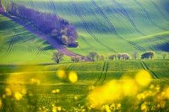 Wiosna zmierzchu krajobrazu fotografia Morawski Tuscany w republika czech fotografia royalty free