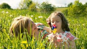 Wiosny łąka -6 Zdjęcie Royalty Free