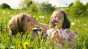 Wiosny łąka -20 Zdjęcia Royalty Free