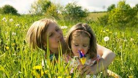 Wiosny łąka -10 Obrazy Royalty Free