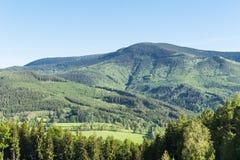Wiosny łąka w górach Jaskrawy wysokogórski krajobraz z niebieskim niebem Jaskrawy słońce w niebieskim niebie Zieleni pola pod nie Zdjęcia Stock