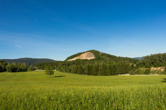 Wiosny łąka w górach Jaskrawy wysokogórski krajobraz z niebieskim niebem Jaskrawy słońce w niebieskim niebie Zieleni pola pod nie Zdjęcie Stock