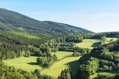 Wiosny łąka w górach Jaskrawy wysokogórski krajobraz z niebieskim niebem Jaskrawy słońce w niebieskim niebie Zieleni pola pod nie Fotografia Royalty Free