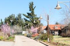Wiosny aleja w kraju terenie Obrazy Royalty Free
