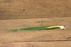 Wiosny cebula na drewnie zdjęcia stock