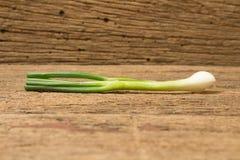 Wiosny cebula na drewnie zdjęcia royalty free