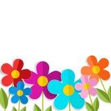 Wiosny 3d kwiaty odizolowywający na bielu eps10 kwiatów pomarańcze wzoru stebnowania rac ric zaszywanie paskował podstrzyżenia we Zdjęcie Stock