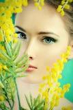 Wiosny dama obrazy royalty free
