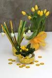 Wiosny dekoracja z żółtymi tulipanami i primula Zdjęcia Royalty Free