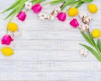 Wiosny dekoracyjna rama Obrazy Stock