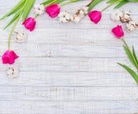 Wiosny dekoracyjna rama Obraz Royalty Free