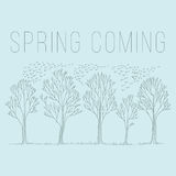 Wiosny drzewny nakreślenie Zdjęcie Stock