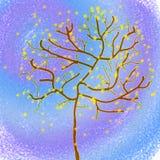 Wiosny drzewo przeciw tłu świt Zdjęcia Royalty Free