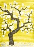 Wiosny drzewo w okwitnięciu, maluje Obraz Royalty Free