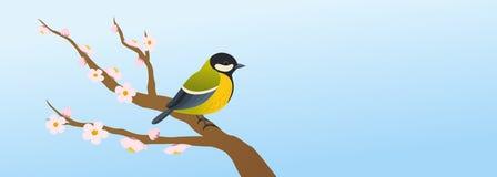 Wiosny ilustracja z wielkim tit ptakiem na okwitnięcie gałąź ilustracja wektor
