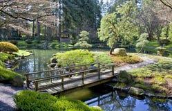 Wiosny Japończyka Ogród Zdjęcie Stock