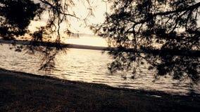 Wiosny jezioro przy zmierzchem w słońcu i las zbiory wideo