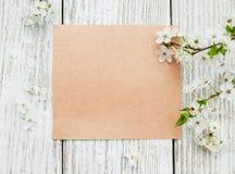 Wiosny karta i okwitnięcie Obrazy Stock