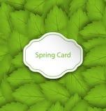 Wiosny karta na Bezszwowym Eleganckim wzorze z Zielonymi liśćmi Zdjęcia Stock
