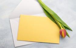 Wiosny kartka z pozdrowieniami z tulipanem Zdjęcie Stock