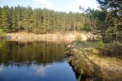 Wiosny krajobrazowa lasowa rzeka Obrazy Stock