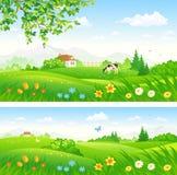 Wiosny kwitnąca wieś ilustracji