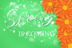Wiosny literowania projekta logo Dekoracyjny typografia element z kwiatami na zielonym tle z bokeh Sezonów kolory ilustracji