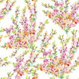 Wiosny lub lata bezszwowy kwiecisty tło royalty ilustracja