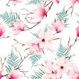 Wiosny magnolia kwitnie bezszwowego wektoru wzór Zdjęcie Stock
