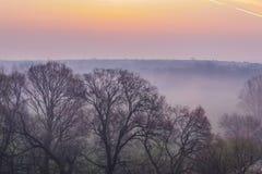 Wiosny mgła zdjęcie stock