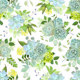 Wiosny mieszanka sukulenty, ziele projekta bezszwowy wektorowy wzór ilustracja wektor