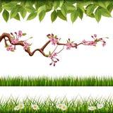 Wiosny naturalna granica ilustracja wektor