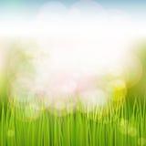 Naturalnej wiosny tło Fotografia Stock