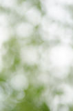 Wiosny natury zamazany tło zdjęcie stock