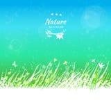 Wiosny niebo z trawy ramą dla twój teksta Obraz Stock