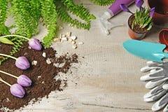 Wiosny ogrodnictwa tło Praca domowa w ogródzie zdjęcia stock