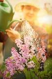 Wiosny ogrodowy pojęcie Zdjęcia Royalty Free
