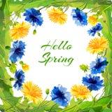Wiosny pola kwiaty dla eighth urodziny lub Marzec Obraz Royalty Free